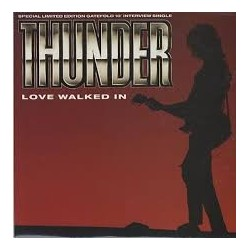 Thunder-Love Walked In