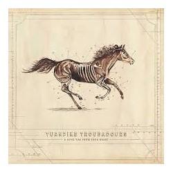 Turnpike Troubadours-A Long Way From Your Heart