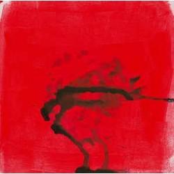 Alex Somers (Sigur Ros)-Untitled