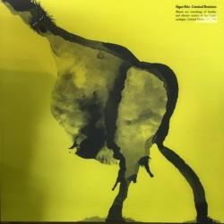Sigur Ros-Liminal Remixes