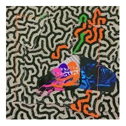 Animal Collective-Tangerine Reef