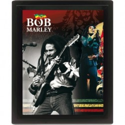 Bob Marley-Poster 3D 25x 20 Cm Collector's Limited Edition