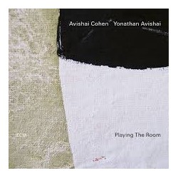 Avishai Cohen/Yonathan Avishai-Playing The Room