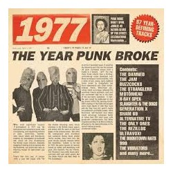 Punk Artisti Vari-1977 The Year Punk Broke