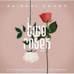 Avishai Cohen-Two Roses