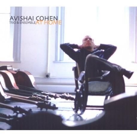 Avishai Cohen Trio & Ensemble-At Home